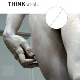 Think Small Maildoos